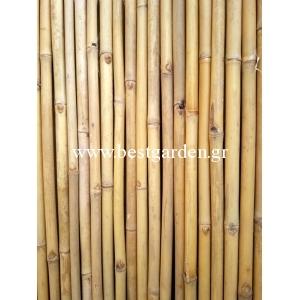 bamboo τονκιν 20-26